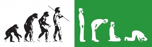 darwin-islam